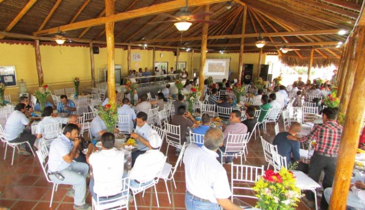 کافه رستوران در پروژه سن فلیپه